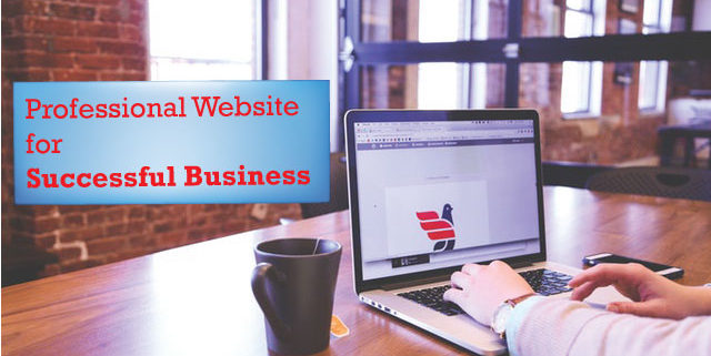 professional-website